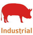 category-pork-industrial